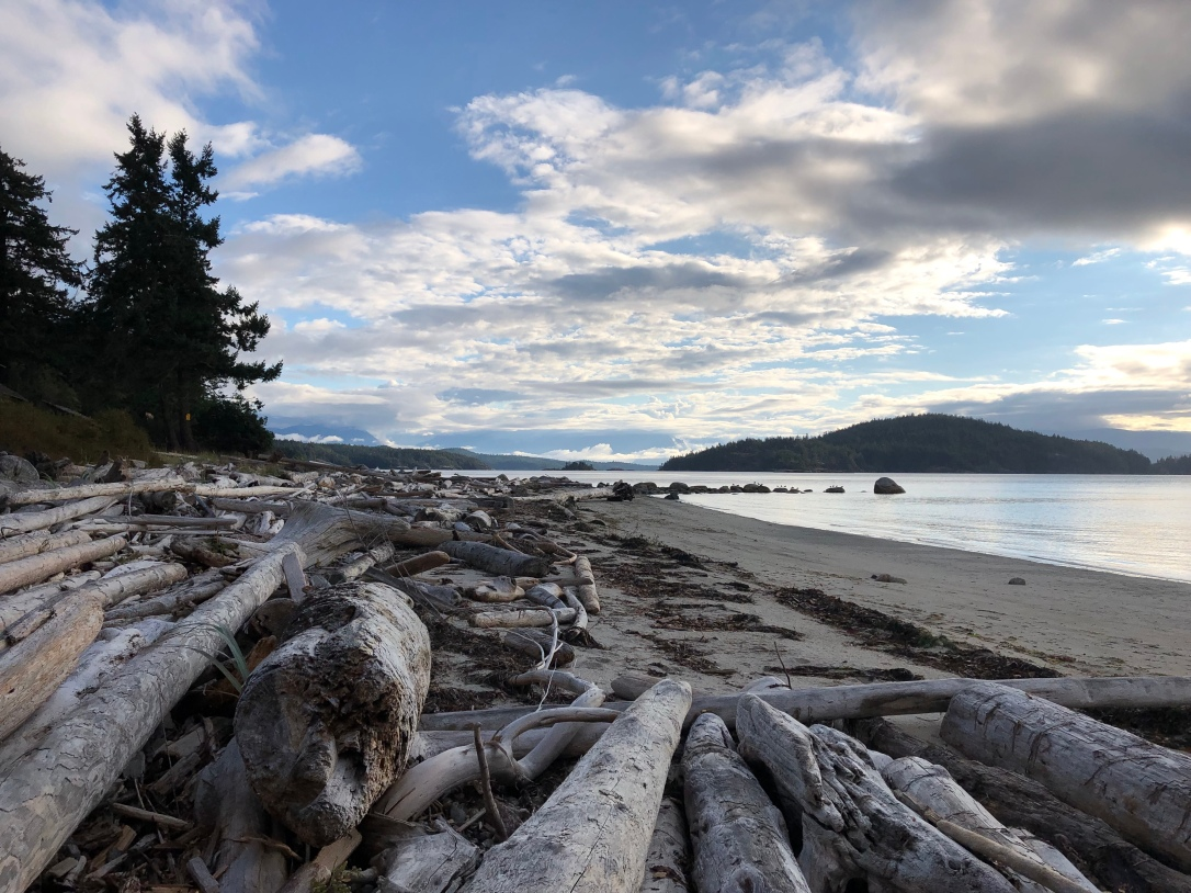 Beach, driftwood, clouds, blue sky, ocean, west coast, Cortes Island, BC