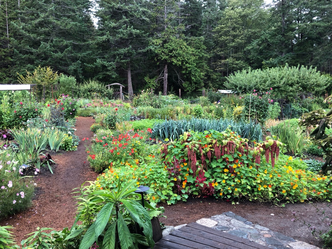 Garden, flowers, vegetables, west coast, hollyhock resort