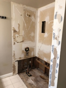 Bathtub torn out